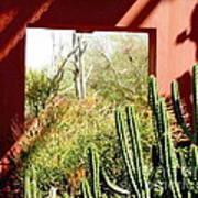 Desert Window Art Print