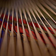 Detail Of Piano Strings Art Print