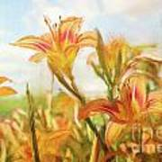 Digital Painting Of Orange Daylilies Art Print