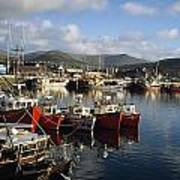 Dingle, Co Kerry, Ireland Boats In A Art Print