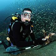 Diver Collects Invasive Lionfish Art Print