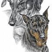 Dober-friends - Doberman Pinscher Portrait Color Tinted Art Print