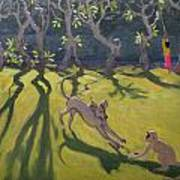 Dog And Monkey Art Print