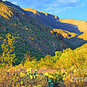 Dog Canyon Nm Oliver Lee Memorial State Park Art Print