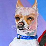 Doggie Know It All Art Print