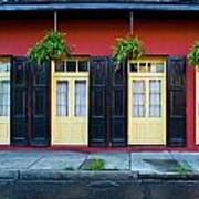 Doors And Shutters Art Print