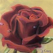 Doris's Rose Art Print