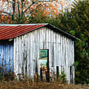 Down On The Farm - Old Shed Art Print