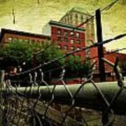 Down The Fence Art Print