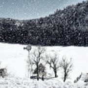 Dreams Of Snow  Art Print