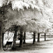 Dreamy Surreal Infrared Park Bench Landscape Art Print by Kathy Fornal