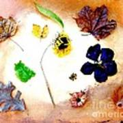 Dried Flowers And Leaves Art Print