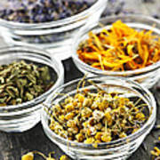 Dried Medicinal Herbs Art Print by Elena Elisseeva