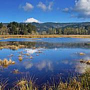 Dry Lagoon Panorama Art Print