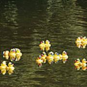 Duck Derby Ducks Art Print