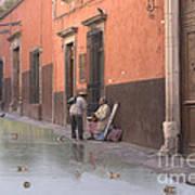 Ducks Swimming On Calle Reloje Art Print