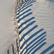 Dune Fence Graphic Art Print