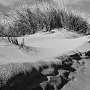 Dunes On A Staten Island Beach Art Print