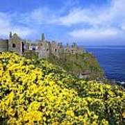 Dunluce Castle, Co. Antrim, Ireland Art Print