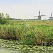 Dutch Landscape With Windmills And Cows Art Print by Carol Groenen