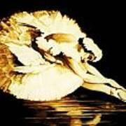 Dying Swan Art Print