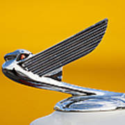 Eagle Hood Ornament Art Print