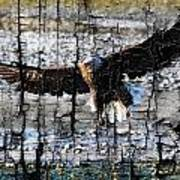 Eagle Imprint Art Print