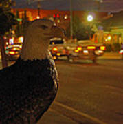 Eagle Watching Grants Pass Night Art Print