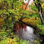 Early Autumn In Maine Art Print