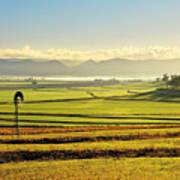 Early Morning Pastoral Scene With Keyline Plowing Near Warwick, Queensland, Australia Art Print