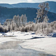Early Morning, Yampa River, Steamboat Springs Art Print