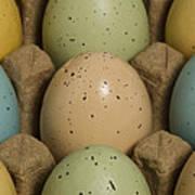 Easter Eggs Carton 1 A Art Print