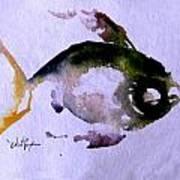 Echo Fish Fourteen Art Print