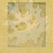 Ecru Leaf Art Print
