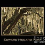 Edward Medard Park Art Print