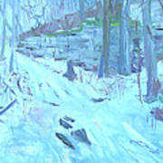 Eel Bay Trail Art Print