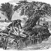 Eel Fishing, 1850 Art Print
