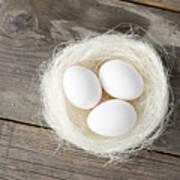 Eggs In Nest On Wooden Counter Art Print