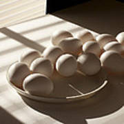 Eggs Lit Through Venetian Blinds Art Print