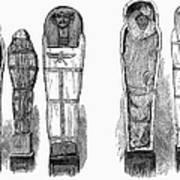 Egypt: Royal Mummies, 1882 Art Print by Granger