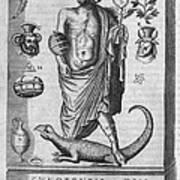 Egyptian God Anubis, 17th Century Art Print