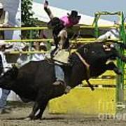 Rodeo Eight Seconds Art Print