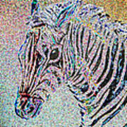 Electric Zebra Art Print