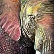 Elephancy Art Print