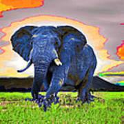 Elephantidae Diurnal Art Print