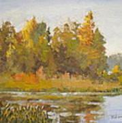 Elk Island 5 Art Print