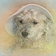 Emily's Bonnet Art Print