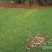 Empty Lawn With A Little Heap Of Leaves Scraped Together Art Print