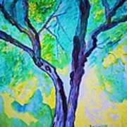 Enbracing Trees Art Print