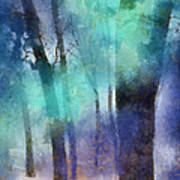 Enchanted Forest. Painting With Light Art Print